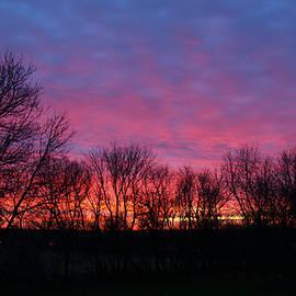 Denise Irving - Winter Sunrise in Roscoe, Illinois