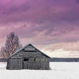 Jukka Heinovirta - Winter Sunset On The Fields
