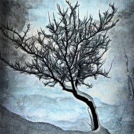 Ronald Bolokofsky - Winter Tree II