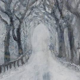 Winter Tree Tunnel by Robin Maria Pedrero