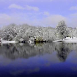 Winter View by Karol Livote