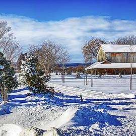 Winter Vista by Tatiana Travelways