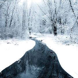 Angela King-Jones - Winter walk