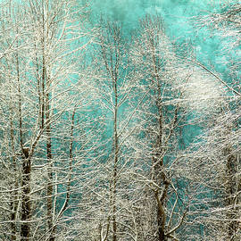Winter Whispers by Karen Wiles