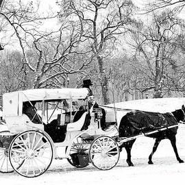 Regina Geoghan - Winter Wonderland Central Park
