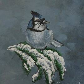 Louise Williams - Wintering Blue Jay