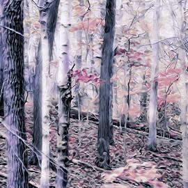 Susan Maxwell Schmidt - Winter