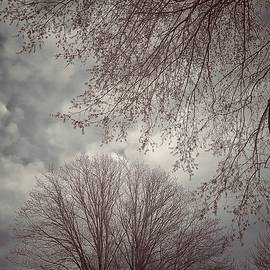 Winters Last Gasp by G K