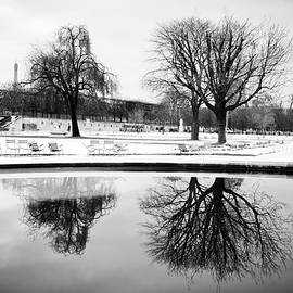 Winter's Reflection by Sophia Pagan