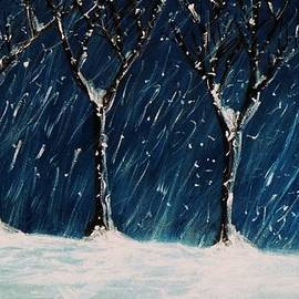 Winter's Snow by John Scates