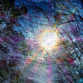 Winter's Wilds in Sun and Ice by Abstract Angel Artist Stephen K