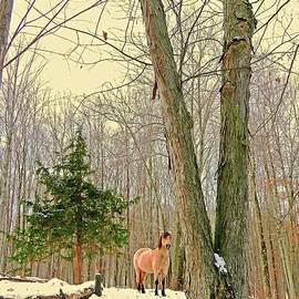 Patricia Keller - Wintertime Moment