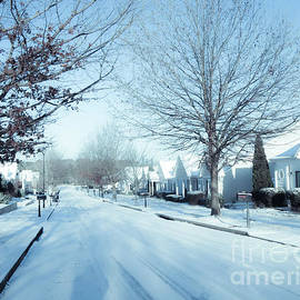 Wintry Snow Fall - Georgia by Adrian De Leon Art and Photography