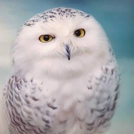 Wisest Of All - Owl Art by Jordan Blackstone