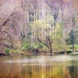 Melissa Bittinger - Wisteria Pond Surreal Dreamy Landscape