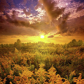 Phil Koch - With All Your Heart And Soul