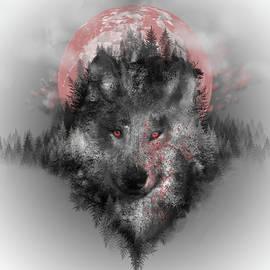 wolf - Bekim Art