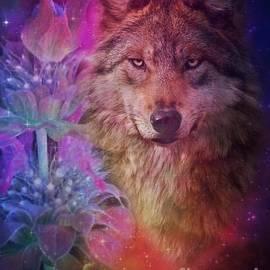 Maria Urso - Wolf Floral