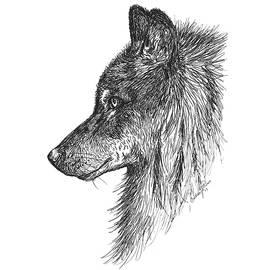 Christine StPierre - Wolf Glare