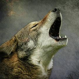 Steve McKinzie - Wolf Howl