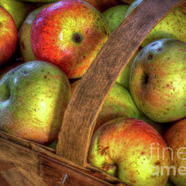 Wolf River Apples by Douglas Stucky