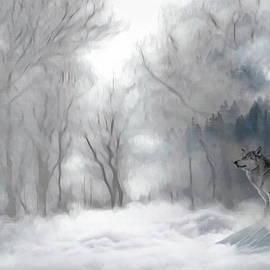 Andrea Kollo - Wolves in the Mist
