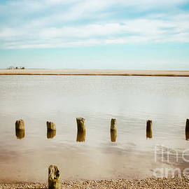 Colleen Kammerer - Wood Pilings in Shallow Waters
