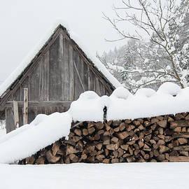Nicola Simeoni - Wood under the snow