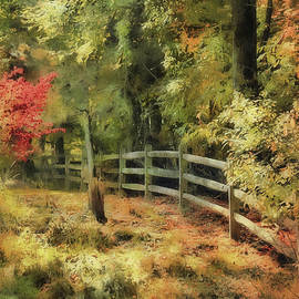Wooden Fence And Fall by Reese Lewis
