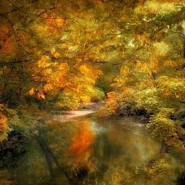 Jessica Jenney - Woodland River Lights