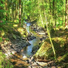Woodland Stream by James Billings