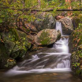 Woodward Falls by Joye Ardyn Durham