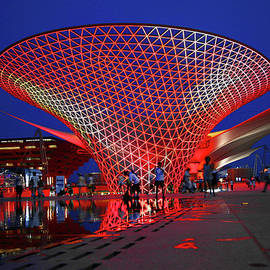 World Expo 2010 Shanghai  by Derrick Neill