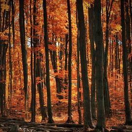 Andrea Kollo - World with Octobers