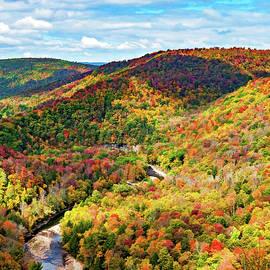 Steve Harrington - Worlds End State Park Lookout 6 - Paint