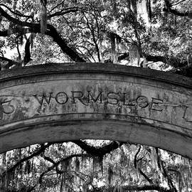 Wormsloe Plantation Isle Of Hope Ga Black And White by Lisa Wooten