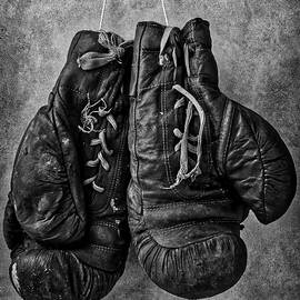 Worn out Boxing Gloves - Garry Gay