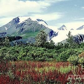 Worthington Glacier by Frank Townsley