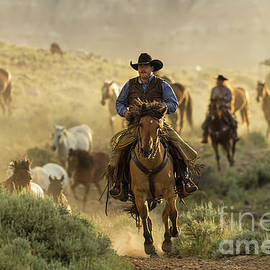 Wrangling the Horses At Sunrise  by Kay Brewer