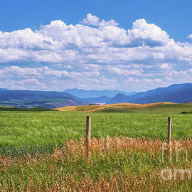 Wyoming Landscape by Sharon Seaward
