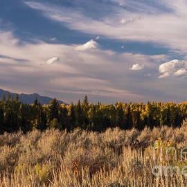 Bob Phillips - Wyoming Scenery Two
