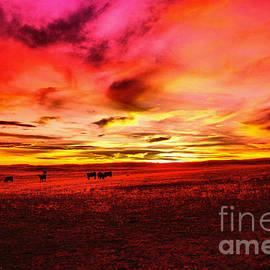 Jeff Swan - Wyoming sunset sinking low