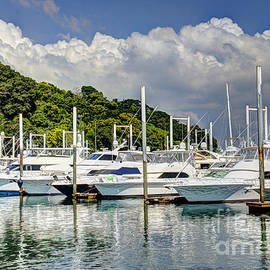 Yacht Lot by Bob Hislop