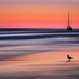 Yachts  at Sunset Widemouth Bay, Cornwall, UK. by Maggie Mccall