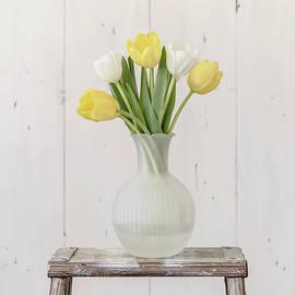 Kim Hojnacki - Yellow and White Tulips