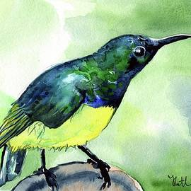 Dora Hathazi Mendes - Yellow Bellied Sunbird