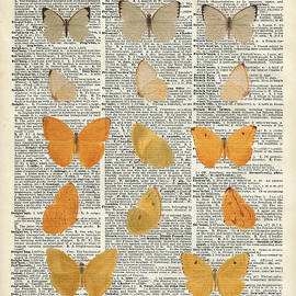 Yellow butterflies over dictionary book page by Anna Wilkon
