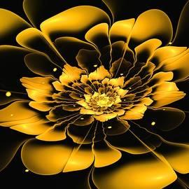 Anastasiya Malakhova - Yellow Flower