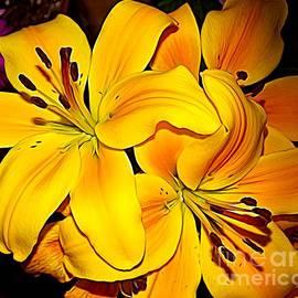 Rose Santuci-Sofranko - Yellow Orange Asiatic Lilies Expressionist Effect