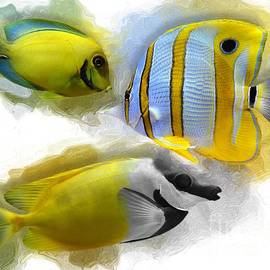 Yellow Reef Fish No 01